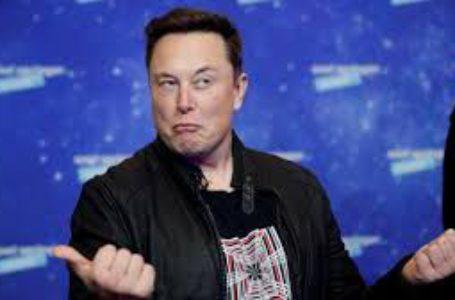 Elon Musk   Foto : Istimewa
