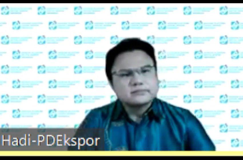 Ketua umum Asosiasi Platform Digital Ekspor Indonesia (APDEI) sekaligus CEO PT Solusi Ekosistem Global (IDNStore) Hadi Lee | Foto: Ist
